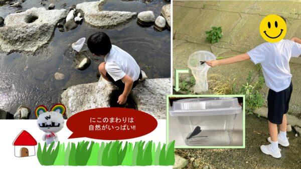 7月*プレスタにこの1日・河川敷で遊ぼう!昆虫採集