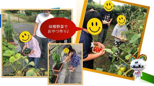 7月*プレスタにこの1日・にこ庭野菜でおやつ作り♪