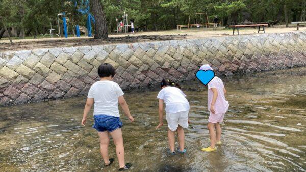 『7月プレスタかがわの1日・琴林公園で磯遊びをしよう!』