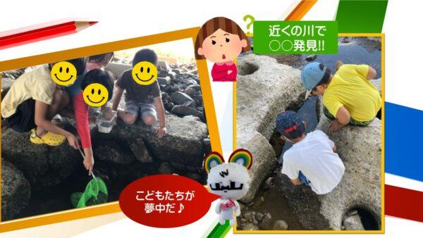 10月*プレスタにこの1日・近くの川で○○発見!!